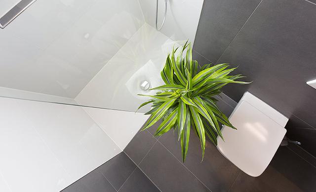 moderne begehbare Dusche in betonoptik